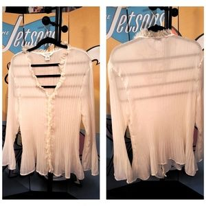 NWOT Cream Pleated Lace Allison Taylor 3X Top
